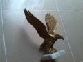 Брозов орел